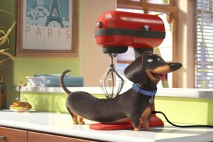 TheSecretLifeofPets_article_story_large-640x426